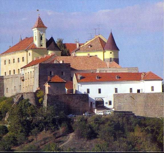 Хто дерибанитиме Мукачівський замок (документ)