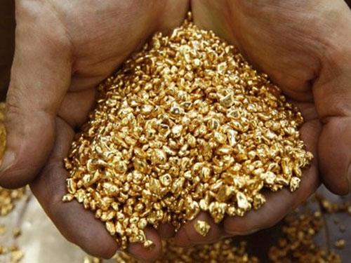 Як поділять тону мужіївського золота?