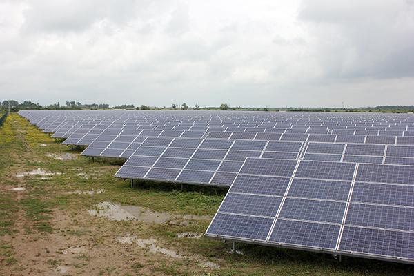 На Виноградівщині збудують сонячну електростанцію