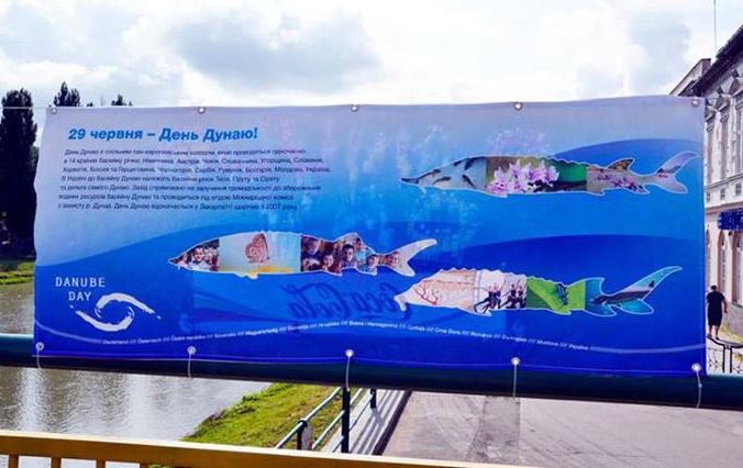 В Ужгороді відзначили День Дунаю (фото)