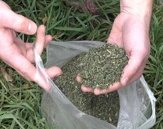 У будинку та автомобілі мешканця Берегова поліція знайшла чималу кількість марихуани