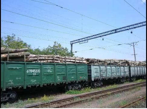 Росіяни через Закарпаття вивозять за кордон український ліс, а українці заради наживи активно їй у цьому допомагають, – Москаль