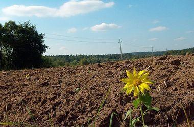 Закарпатська прокуратура вимагає через суд повернути у державну власність землі вартістю майже 225 млн грн