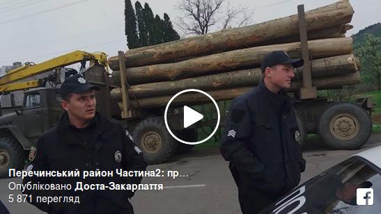 Закарпатські активісти затримали вантажівку кругляку (відео)