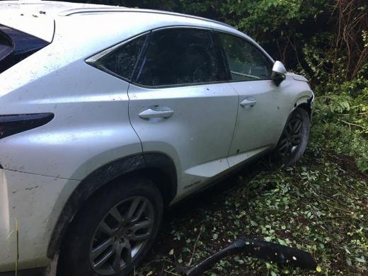 На Закарпатті водій іномарки протаранив шлагбаум на КПП, поранив прикордонника і втік (ФОТО, ВІДЕО)
