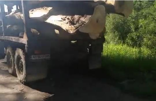 Безчинства лісовозів на дорогах Закарпаття (відео)