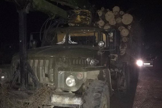 На Тячівщині зупинили вантажівку з нелегальною деревиною