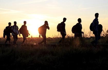 Закарпатські прикордонники затримали велику групу нелегалів
