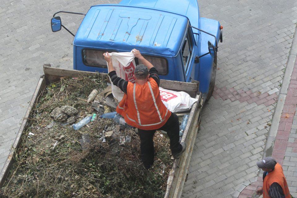 """В Новому районі Ужгорода ліквідували """"жахіття"""" діяльності голубиних ватаг (фото)"""