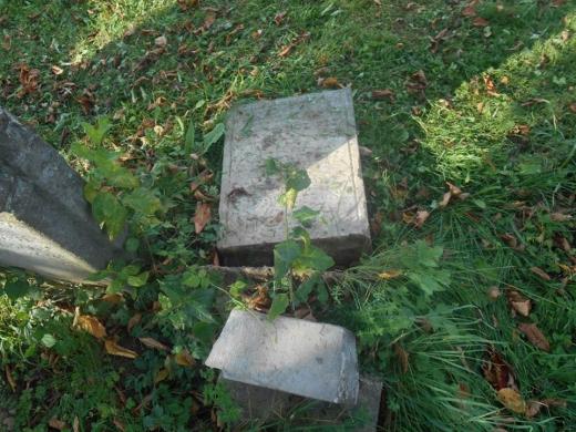 На Свалявщині п'ятеро малолітніх хуліганів пошкодили пам'ятники на цвинтарі