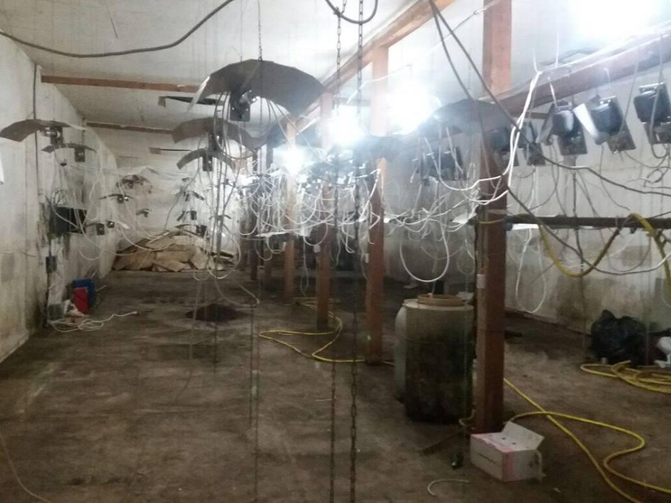 Як виглядає нарколабораторія у Закарпатському селі (фото)