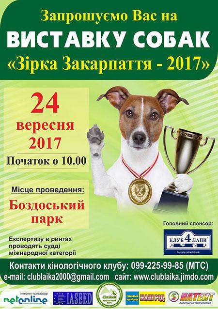 У неділю в Ужгороді пройде міська виставка собак