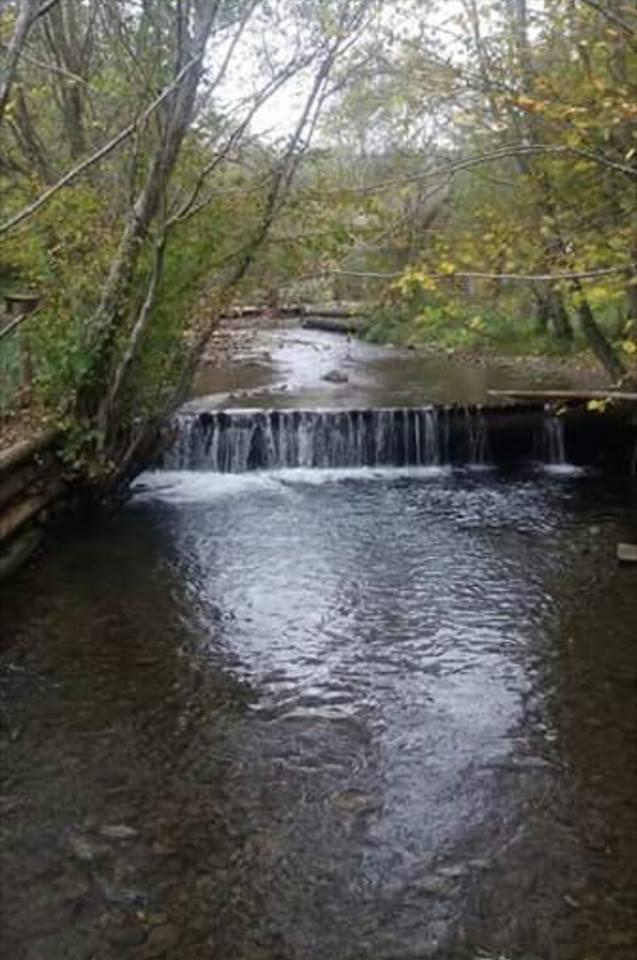 Ужанський національний природний парк відзначає 20-річчя (ВІДЕО)