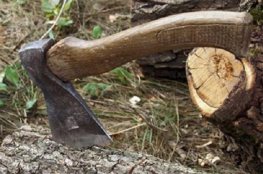 На Закарпатті судитимуть лісівника Нацпарку «Зачарований Край», який незаконно вирубував дерева