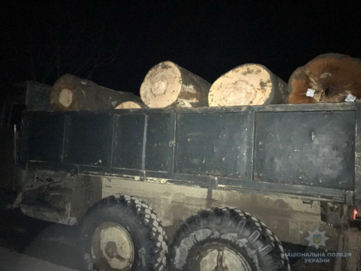 """На Тячівщині полісмени зупинили вантажівку з """"лівою"""" деревиною"""
