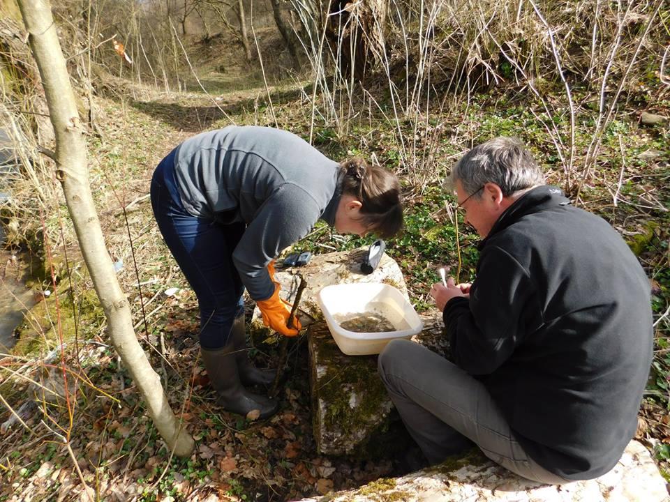 Ужанський нацпарк відвідали румунські науковці(фото)