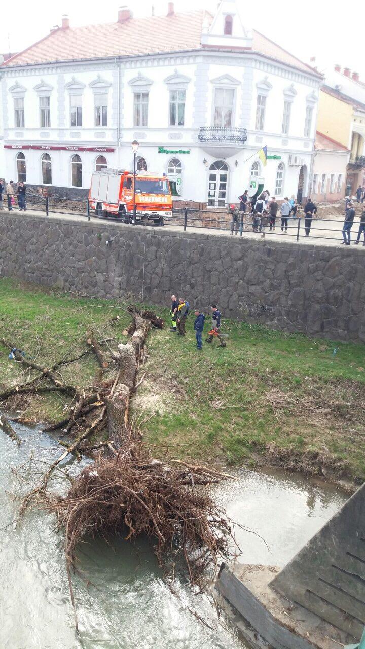 Рятувальники визволили з сміттєвого полону ужгородський пішохідний міст (фото)