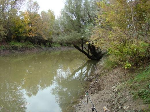 У річці на Воловеччині знайшли утопленика