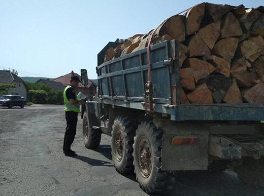 """Закарпатські патрульні зупинили вантажівку з """"лівою"""" деревиною"""