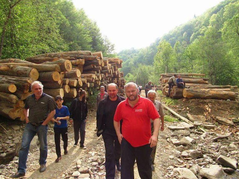 """На Воловеччині громадськість дала відсіч """"чорним"""" лісорубам, які діяли під """"дахом"""" екоінспекції"""