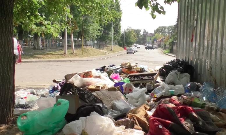 Влітку обласний центр Закарпаття фактично тоне у смітті (фото)
