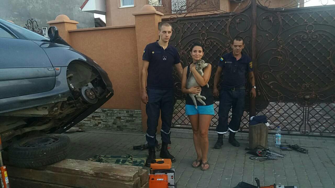 На Ужгородщині рятувальники визволяли цуценя з металевої пастки