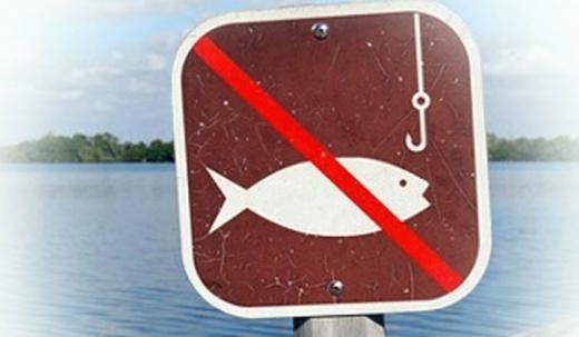 На Закарпатті введено обмеження для риболовів