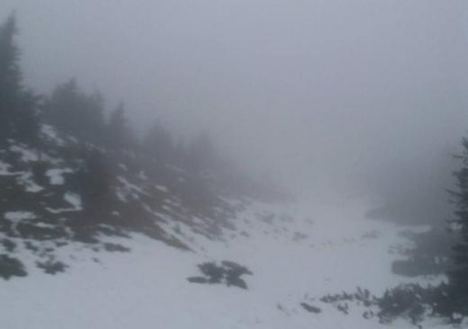 Закарпатські рятувальники допомогли туристам, які потрапили в горах у негоду