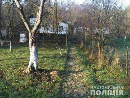 На Іршавщині жінка забила чоловіка насмерть поліном