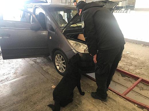 Закарпатські прикордонники виявили у двох автівках боєприпаси та холодну зброю