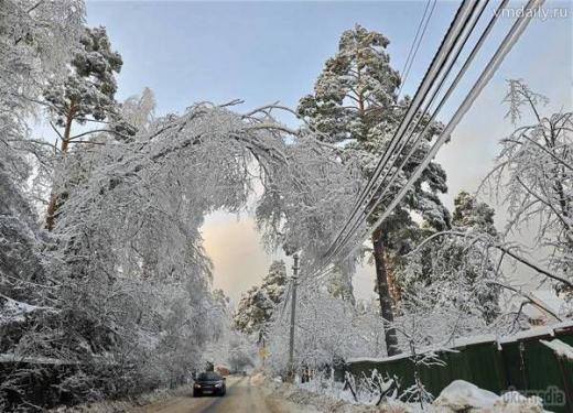 Через налипання снігу 20 населених пунктів Закарпаття залишились без електропостачання