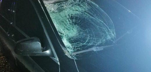 Смертельна ДТП на Тячівщині – загинув велосипедист