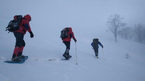Закарпатські рятувальники надали допомогу туристці, яка травмувала спину, катаючись на лижах