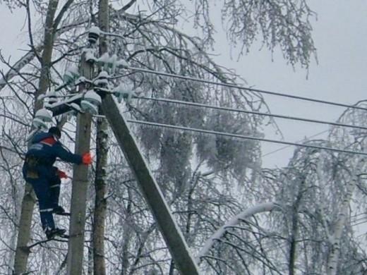Через падіння дерев на лінії електропередач знеструмлено 35 сіл у трьох районах Закарпаття