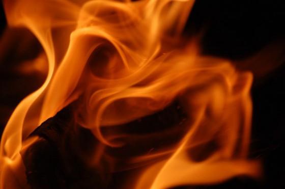 На території дачного масиву в Ужгородському районі після пожежі у саморобній жерстяній споруді знайшли рештки людини