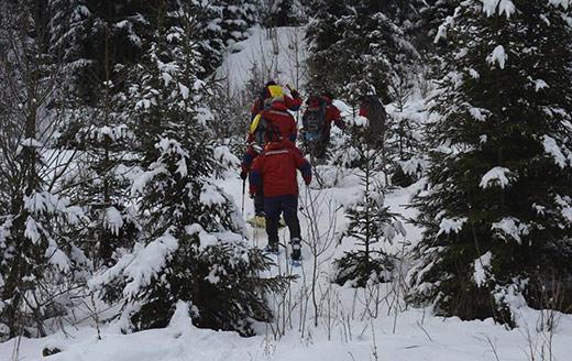 Туристку, яка загубилася у горах на Закарпатті, відшукали