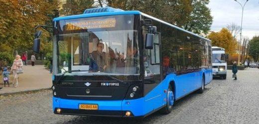 В Ужгороді автобуси маршруту № 20 їздитимуть частіше