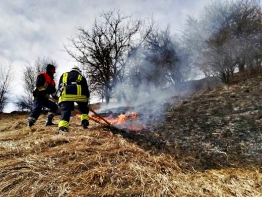 В Ужгороді через спалювання сухої трави ледве не згорів будинок
