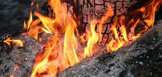 У циганському таборі в Ужгороді згоріли два дерева