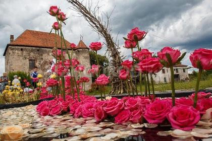 """Незабаром у чинадіївському замку """"Сент-Міклош"""" пройде щорічний квітковий фестиваль"""