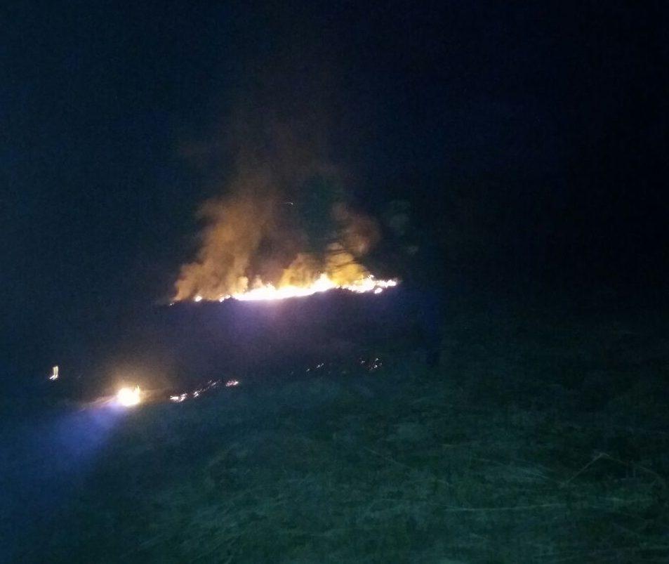 На Іршавщині лісівники оперативно ліквідували підпал