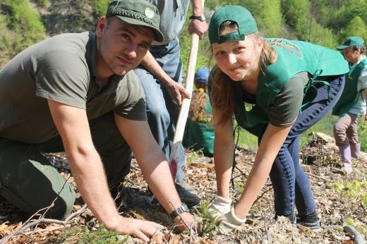 На Тячівщині лісівники разом із школярами висадили 4 тисячі дерев