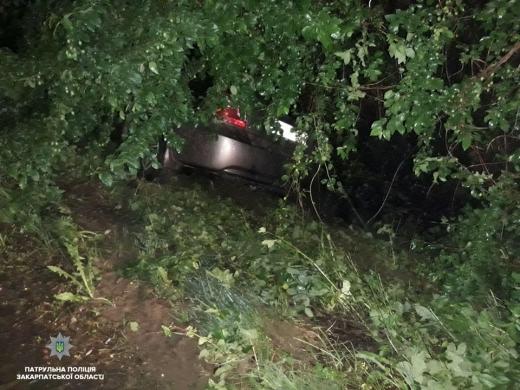 На Закарпатті п'яний водій, втікаючи від патрульних, опинився у кюветі
