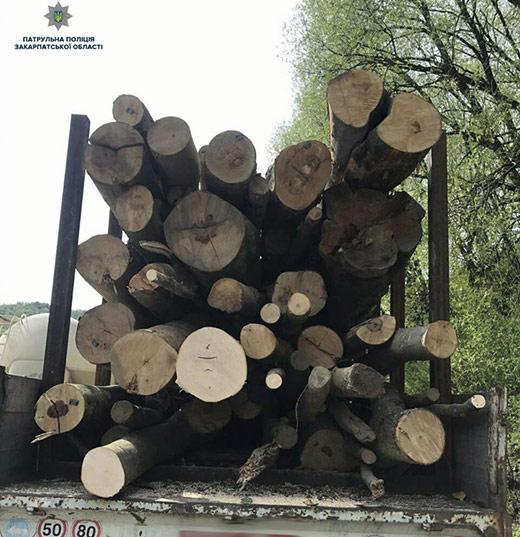 У Нижніх Воротах патрульні зупинили вантажівку з деревиною без відповідних документів