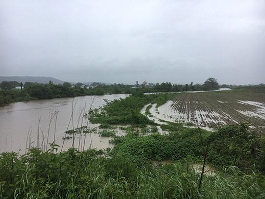 Інформація щодо наслідків погіршення погодних умов на території Закарпатської області станом на 14:00
