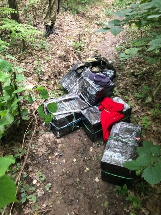 Неподалік кордону з Румунією на Закарпатті знайшли 7 пакунків сигарет, покинутих контрабандистами