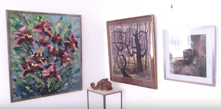 До Дня Конституції України в Ужгороді проходить художня виставка
