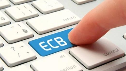 Протягом 11 місяців цього року платники Закарпатської області перерахували до бюджету 4 млрд. 044,5 млн. грн. ЄСВ