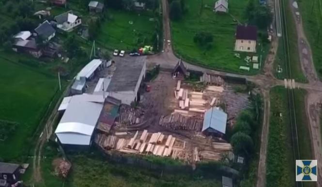 На Закарпатті СБУ блокувала масштабне розкрадання деревини з Лазещинського лісництва (відео)