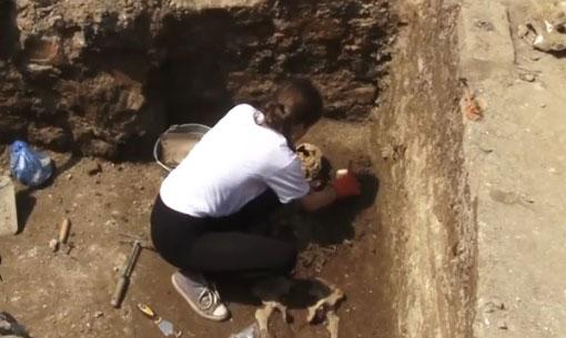В Ужгороді на території замку проходять археологічні розкопки (ВІДЕО)